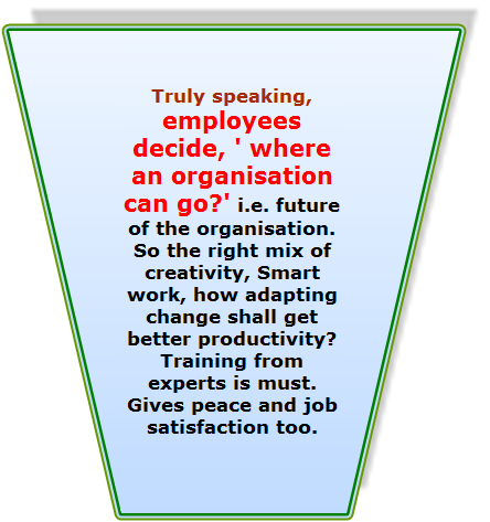 Employees decide where an organisation can go..